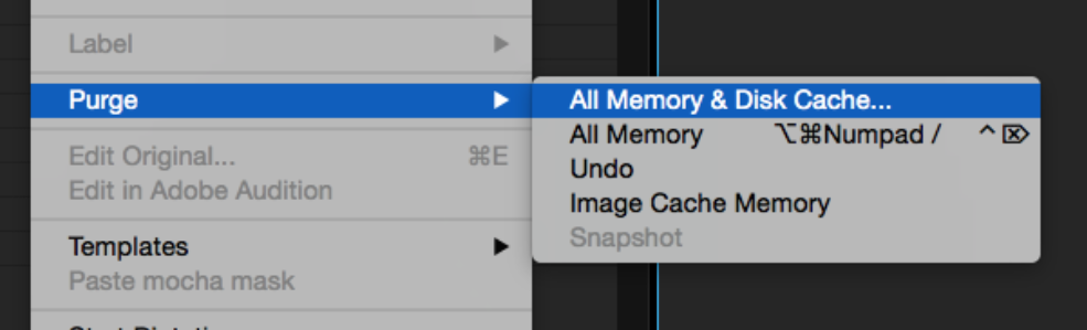 Edit > Purge > All Memory & Disk Cache